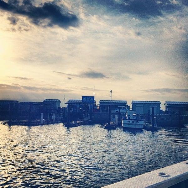 11/9/2013にschenkluが金沢八景 忠彦丸 釣船・釣宿で撮った写真