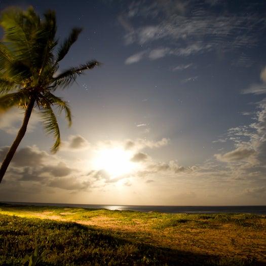 As longas praias, sombreadas por coqueiros, são protegidas por recifes que formam piscinas naturais.