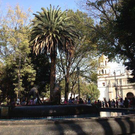 Photo taken at Jardín Hidalgo by Manuel P. on 12/2/2012