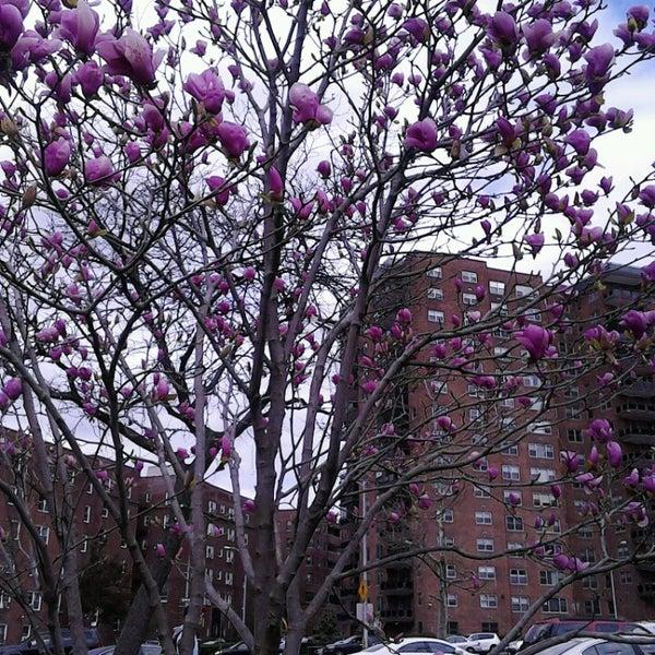 Das Foto wurde bei MacDonald Park von Maria-Leena S. am 4/13/2013 aufgenommen
