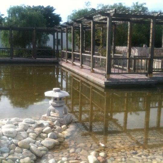 Tunis for Jardin japonais tunis