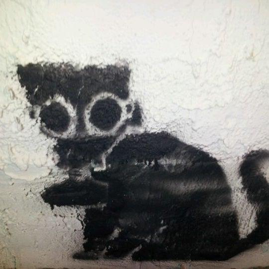 Photo taken at Yucca Tap Room by Nickolas M. on 3/6/2012