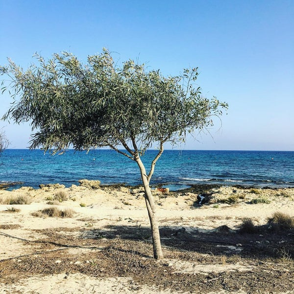 Photo taken at Makronissos beach by Charis T. on 9/20/2016