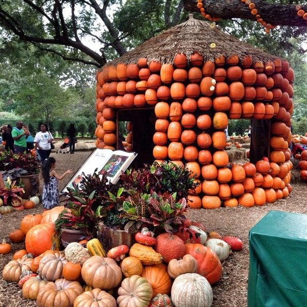 Foto tirada no(a) Dallas Arboretum and Botanical Garden por Faith H. em 10/27/2013