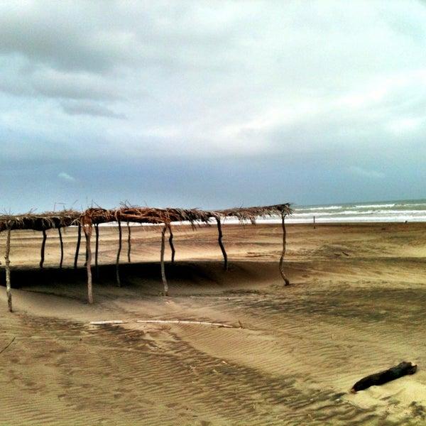 3/27/2013에 Fernando D.님이 Playa Chachalacas에서 찍은 사진