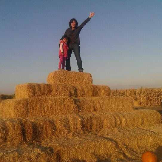 Photo taken at Fantozzi Farms Corn Maze and Pumpkin Patch by Diana L. on 10/30/2013