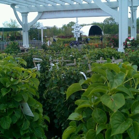 Photos at Lurvey Landscape Supply & Garden Center - Des Plaines, IL