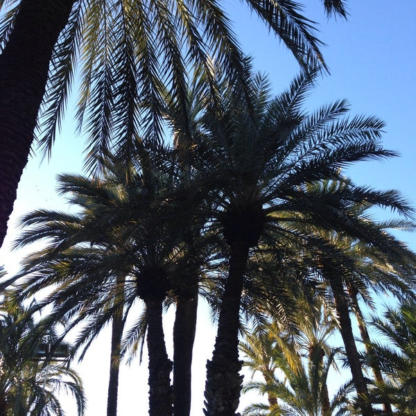 Foto tomada en Hotel Huerto del Cura por Ana H. el 12/19/2014