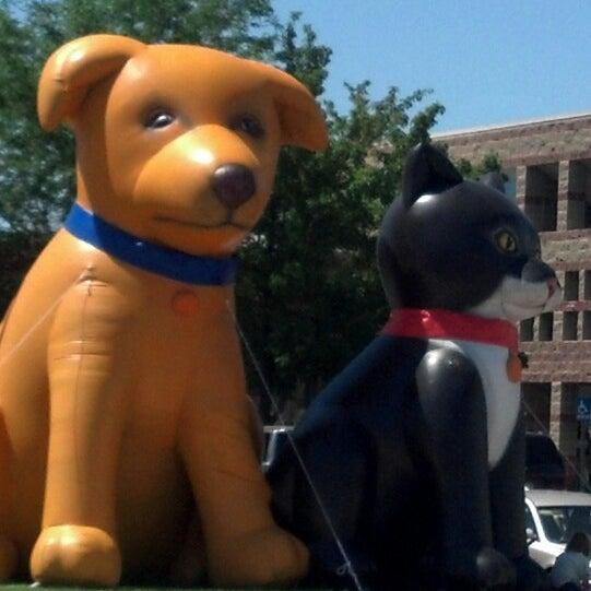 Salt Lake City Humane Society Clinic