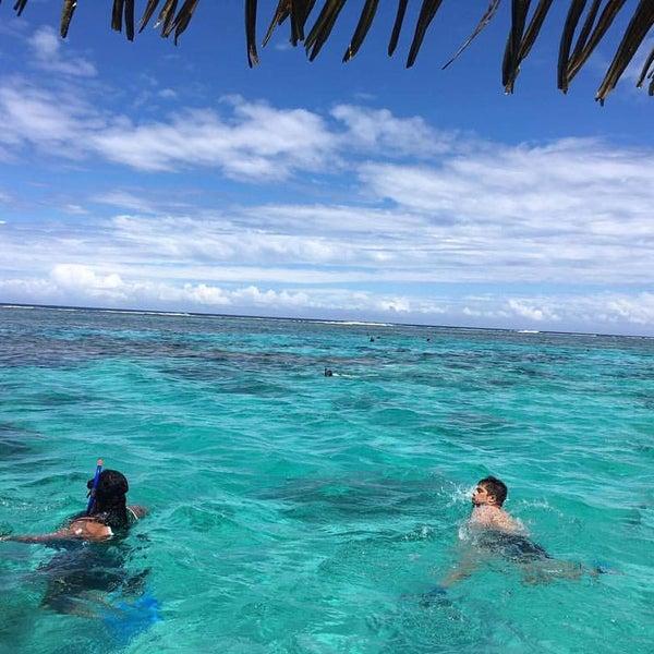 Cook Islands Beaches: Captain Tama's Lagoon Cruizes, Rarotonga, Cook Islands