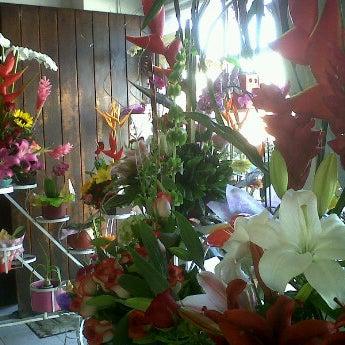 Foto tomada en Florería Flores de Oaxaca por Gibrán M. el 11/10/2012
