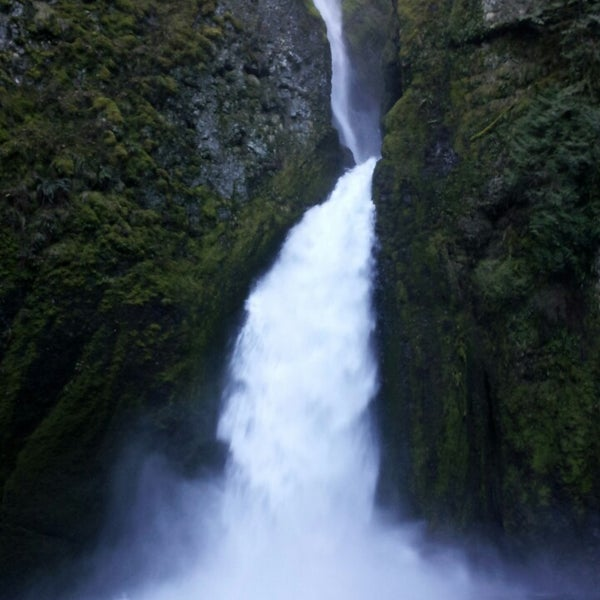 Photo taken at Wahclella Falls Trail by Irma R. on 3/12/2014