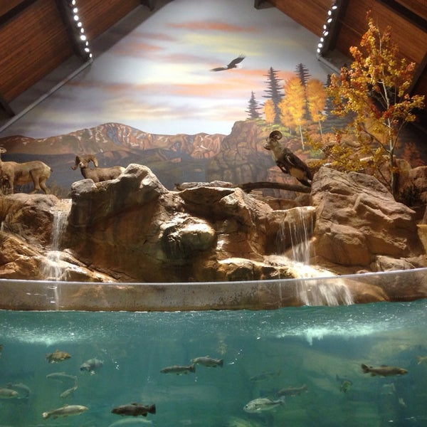 Bass pro shops sporting goods shop in northgate for Fish store colorado springs