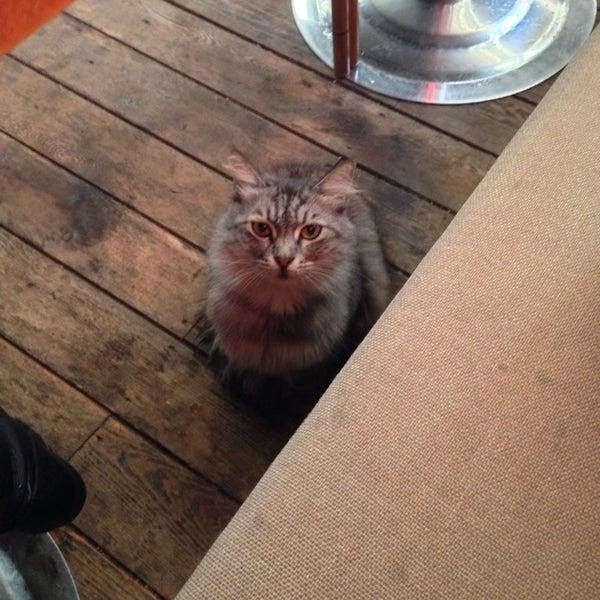 10/17/2013 tarihinde Burcu K.ziyaretçi tarafından Dodo Cafe & Pub'de çekilen fotoğraf