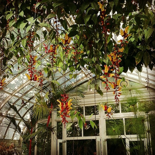 Photo taken at Enid A. Haupt Conservatory by Lansing M. on 6/11/2013
