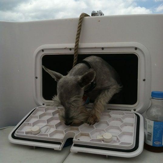 Photo taken at Lake Boca Raton by LeenO on 5/12/2012