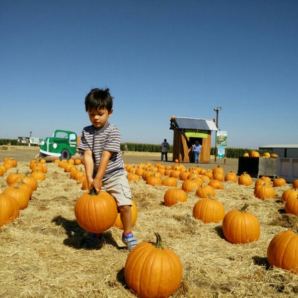 Photo taken at Fantozzi Farms Corn Maze and Pumpkin Patch by Brian M. on 10/10/2015
