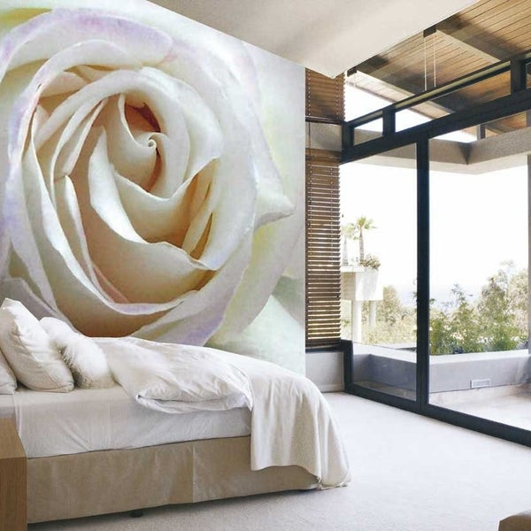 Hey Everyone, Check Out Our Latest Collection Of Murals And Wallcoverings.