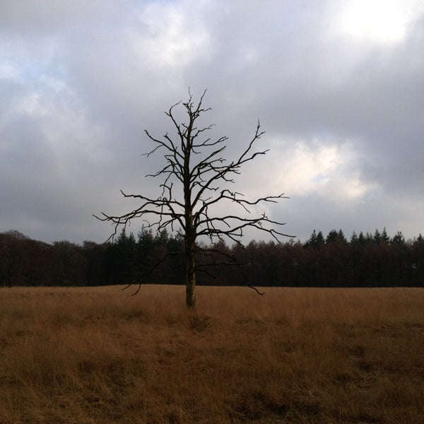 Photo taken at Nationaal Park De Hoge Veluwe by Marcel B. on 1/13/2013