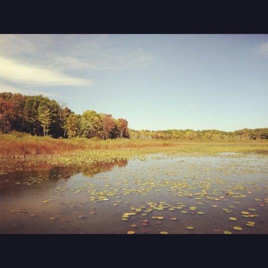 Three Rivers Michigan: Photos At Camp Wakeshma