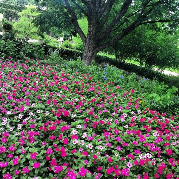 Fort Worth Botanic Garden - Botanical Garden in Fort Worth