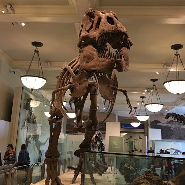 Photo taken at David H. Koch Dinosaur Wing by Emily M. on 9/10/2017