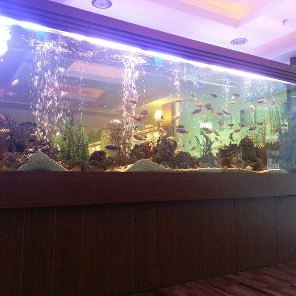 4/23/2013 tarihinde Sel T.ziyaretçi tarafından Sea Life Resort Hotel'de çekilen fotoğraf