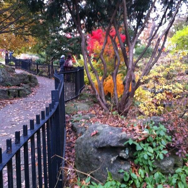 11/9/2013 tarihinde Pia F.ziyaretçi tarafından High Park'de çekilen fotoğraf
