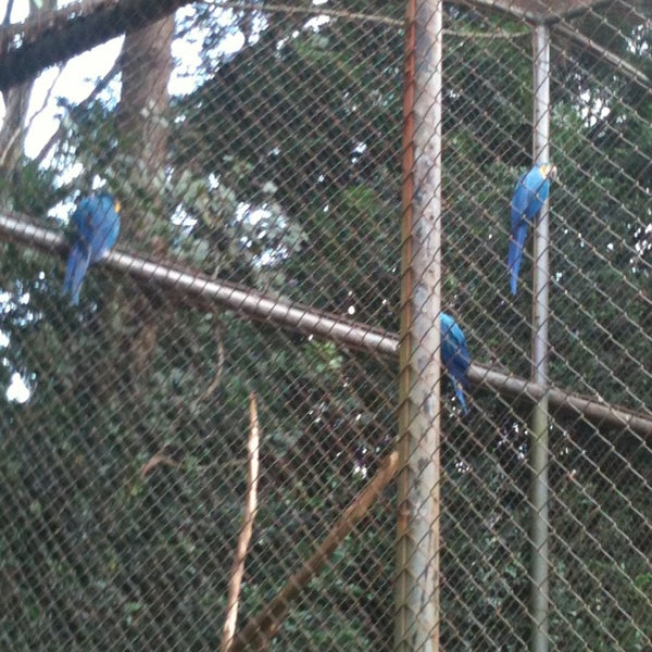 Photo taken at Parque das Hortênsias by Erika S. on 2/24/2013