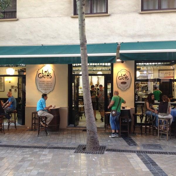 Los Gatos Spanish Restaurant In Centro Hist Rico