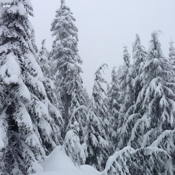 Photo taken at Cypress Mountain Ski Area by Costa B. on 1/28/2013