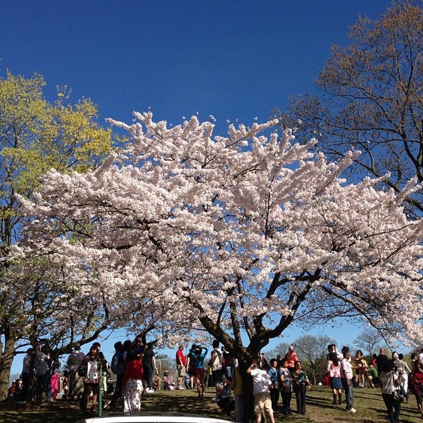 5/6/2013 tarihinde Monim M.ziyaretçi tarafından High Park'de çekilen fotoğraf