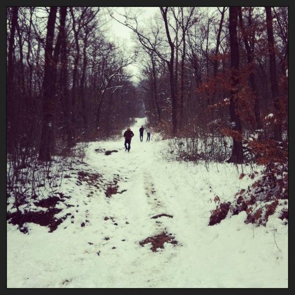 2/11/2013 tarihinde Zsofia B.ziyaretçi tarafından Nagy-Kevély'de çekilen fotoğraf