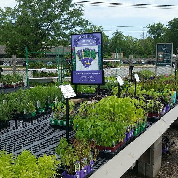 Photos at Gale\'s Garden Center - Flower Shop