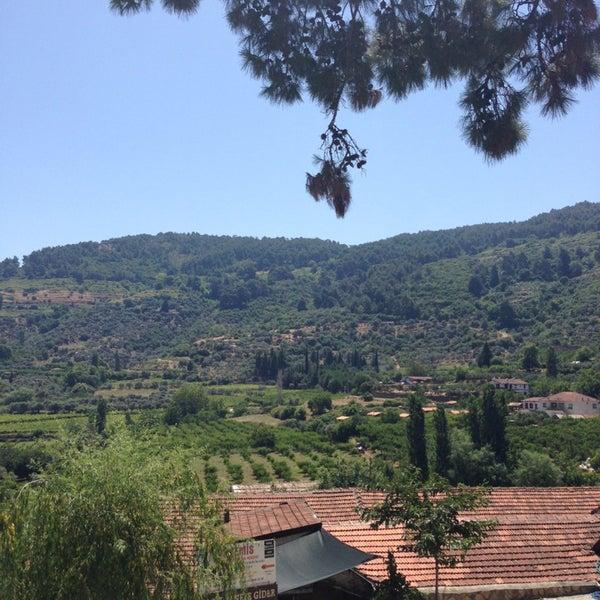6/24/2013 tarihinde Gonul O.ziyaretçi tarafından Şirince Artemis Şarap ve Yöresel Tadlar Evi'de çekilen fotoğraf