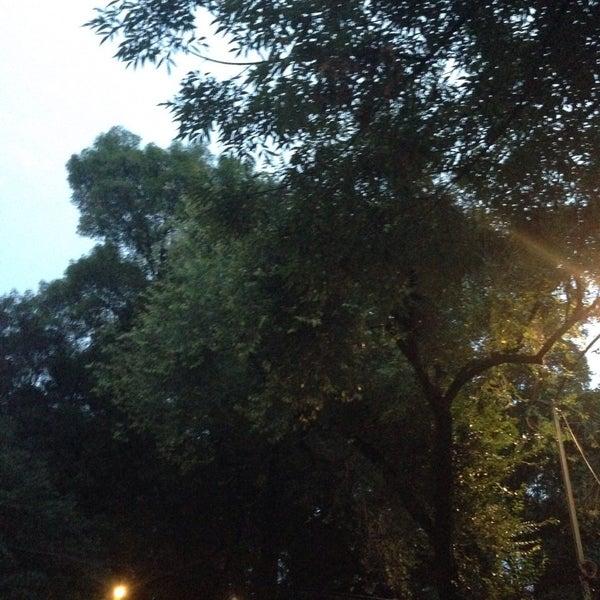 Photo taken at Jardin Morelos by Frankspotting @teporingo C. on 8/22/2016