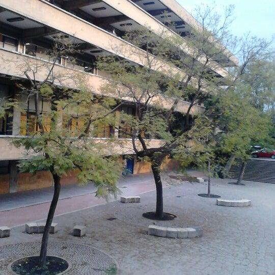 Fotos en facultad de arquitectura unam facultad y for Inscripciones facultad de arquitectura
