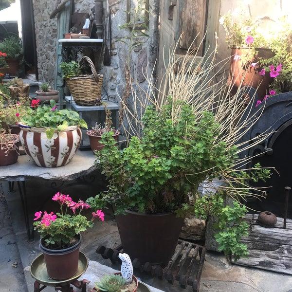 Foto diambil di Üzüm Cafe oleh Melek B. pada 9/22/2018