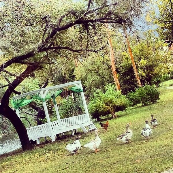 10/17/2013 tarihinde Kıvanç Ozan A.ziyaretçi tarafından Yonca Lodge'de çekilen fotoğraf