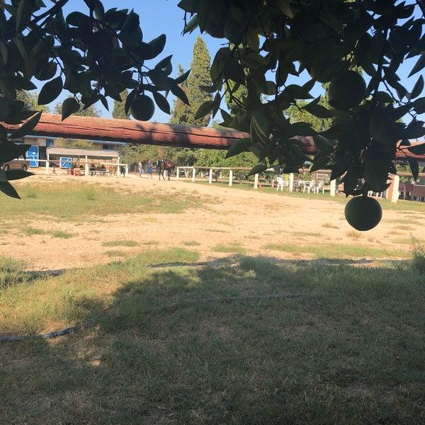 9/22/2018 tarihinde Ayşenur T.ziyaretçi tarafından Nallı Bahçe At Çifliği'de çekilen fotoğraf