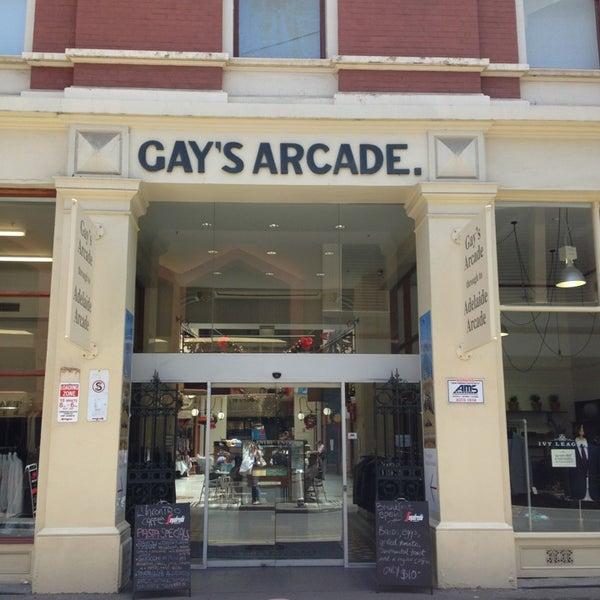 gay bears raw xxx