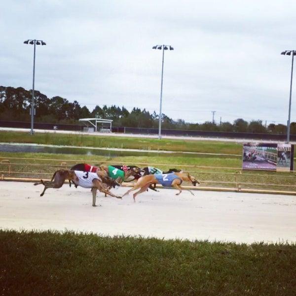 Daytona beach kennel club and poker room jobs