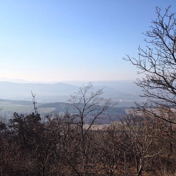 2/15/2015 tarihinde bori m.ziyaretçi tarafından Nagy-Kevély'de çekilen fotoğraf
