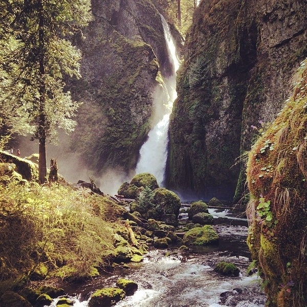 Photo taken at Wahclella Falls Trail by Rob A. on 4/8/2014