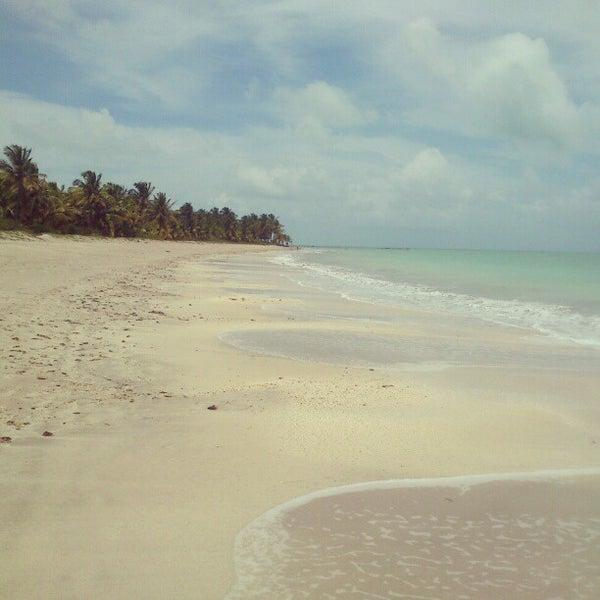 Foto tirada no(a) Praia de Paripueira por Alex C. em 2/20/2013