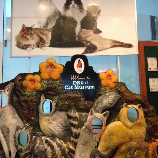 Photo taken at Muzium Kucing (Cat Museum) by MuhammadFaridz M. on 4/15/2016
