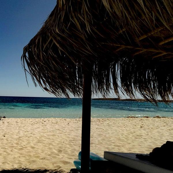 Чистый пляж,  белый песок, есть бесплатный душ, туалет и раздевалка. Лежаки надо бронировать заранее.