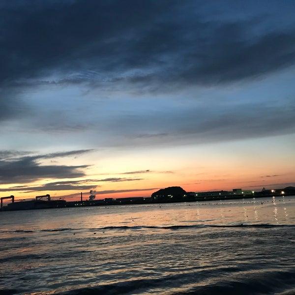 12/4/2017にYu I.が金沢八景 忠彦丸 釣船・釣宿で撮った写真