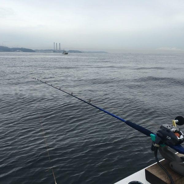 9/26/2016にYu I.が金沢八景 忠彦丸 釣船・釣宿で撮った写真