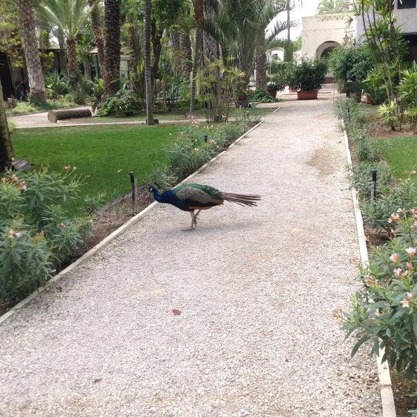 Foto tomada en Hotel Huerto del Cura por Oxana H. el 8/2/2015